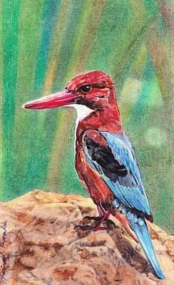Kingfisher Mixed Media - Kingfisher by Haritharaka Nath