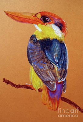 Painting - Kingfisher by Jasna Dragun