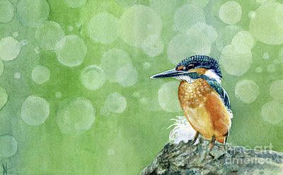 Painting - Kingfisher by Michelle T Williams