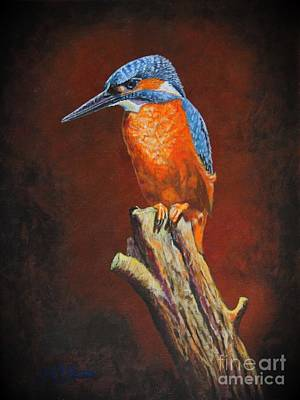 Painting - Kingfish.....waiting For Dinner by Bob Williams
