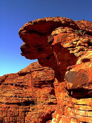 Photograph - Kings Canyon by Louise Fahy