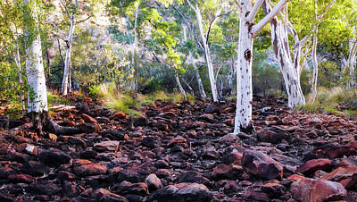 Photograph - Kings Creek - Kings Canyon Australia by Lexa Harpell