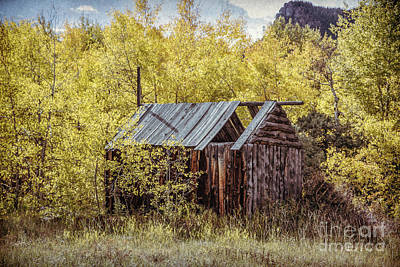 Photograph - Kinikinik Fishing Cabin by Lynn Sprowl