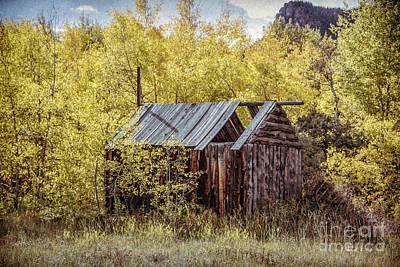 Photograph - Kinikinik Fishing Cabin by Lynn Sprowl