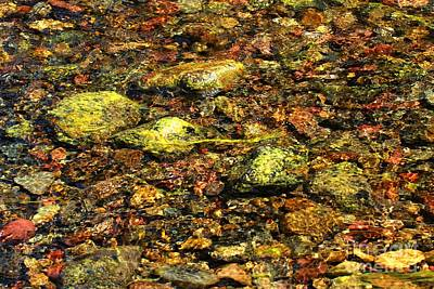 Kintla Lake River Rocks Art Print