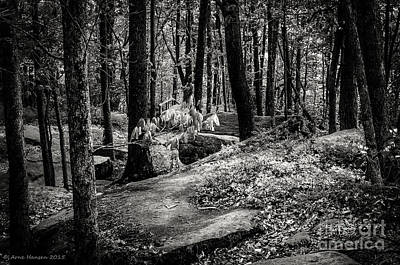 Photograph - Kinzua Rim Rock Overlook II by Arne Hansen