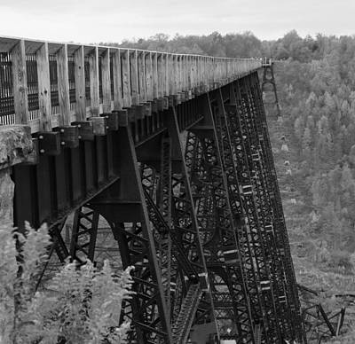 Photograph - Kinzua Skywalk by Rick Morgan