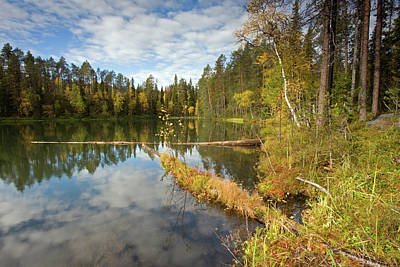 School Teaching - Kirkasvetinenlampi by Aivar Mikko