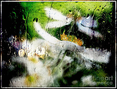 Photograph - Kissed By Rain.. by Jolanta Anna Karolska