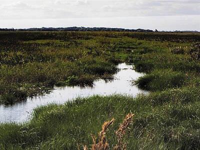 Photograph - Kissimee Prairie Stream  by Chris Mercer