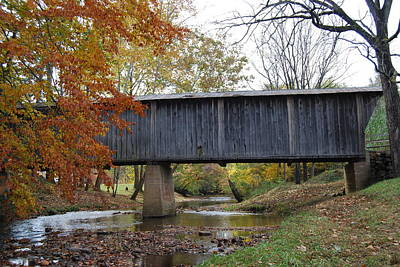 Art Print featuring the photograph Kissing Bridge At Fall by Eric Liller