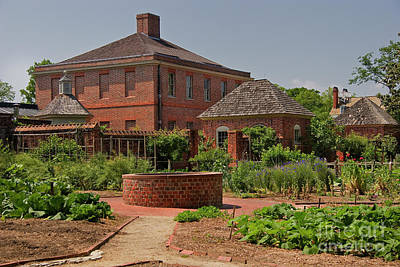 Photograph - Kitchen Garden At Tryon Palace by Jill Lang