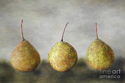 Photograph - Kitchen Trio by Darren Fisher