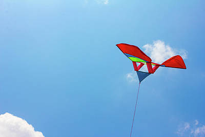 Photograph - Kite Flying by Jingjits Photography