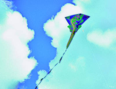 Photograph - Kite II by Tony Grider