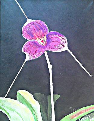 Painting - Kite Orchid by Francine Heykoop