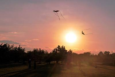Photograph - Kites Flying In Park by Matt Harang