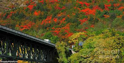 Photograph - Kittatinny's Color Cascade by Tami Quigley