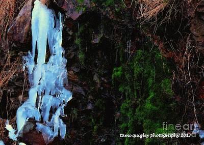 Photograph - Kittatiny's Frozen Cascade by Tami Quigley