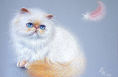 Kitten And Feather 2 Art Print