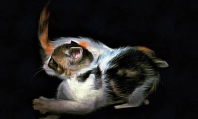 Photograph - Kitten Ballet by Dorothy Berry-Lound