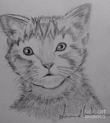 Painting - Kitten by Brindha Naveen
