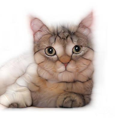 Purebred Digital Art - Kitten Cat Posing For Portret by Alexandr Az