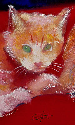 Painting - Kitten by Charles Stuart