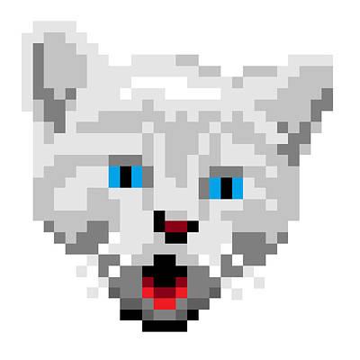 Digital Art - Kitten by Gerald Lynch