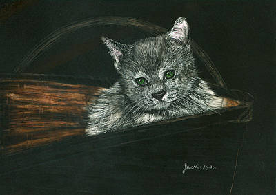 Mixed Media - Kitten In A Basket by Jessica Kale