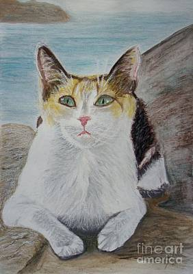 Wall Art - Painting - Kitten In Greece by Cybele Chaves