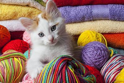Kitten In Yarn Art Print by Garry Gay