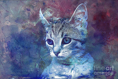 Kitten Art Print by Jutta Maria Pusl