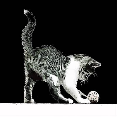 Wall Art - Digital Art - Kitten Play by David G Paul
