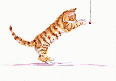 Kitten Teasing Original