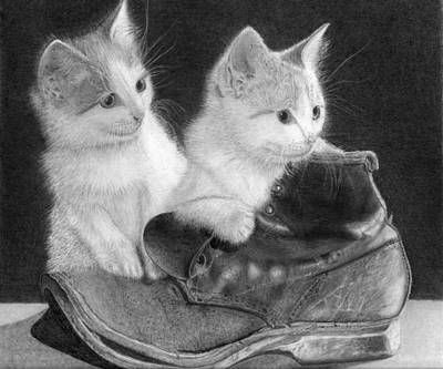 Old Boots Drawing - Kittens In A Boot by Alexandra Riley