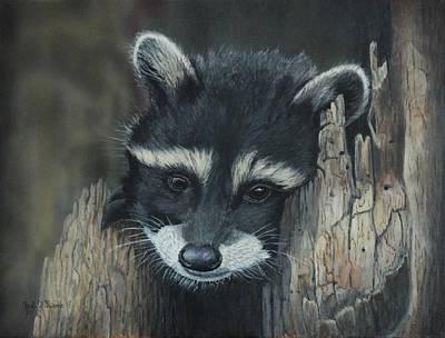Kit...the Baby Raccoon Art Print