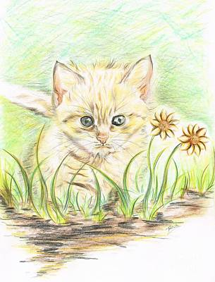 Sunny Day Drawing - Kitty Amongst The Flowers by Teresa White