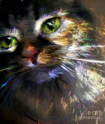 Photograph - Kitty Cat Fireworks by Renee Trenholm
