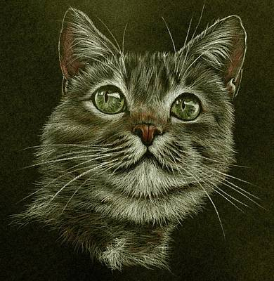 Kitty Cat Art Print by Heidi Kriel