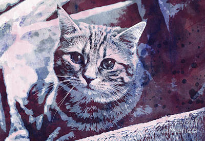 Pets Art Digital Art - Kitty Cat by Jutta Maria Pusl