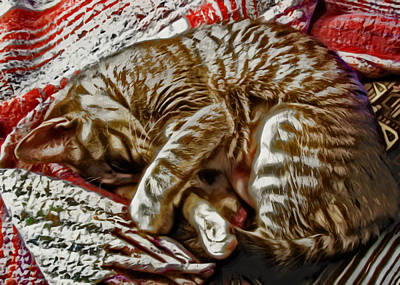 Kitten Digital Art - Kitty Dreams by David G Paul