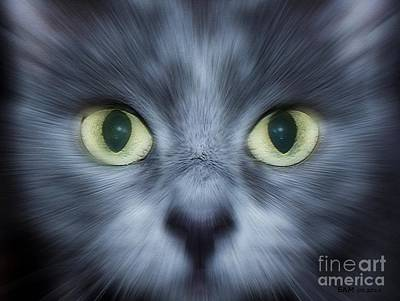 Animal Lover Digital Art - Kitty Face by Elizabeth McTaggart