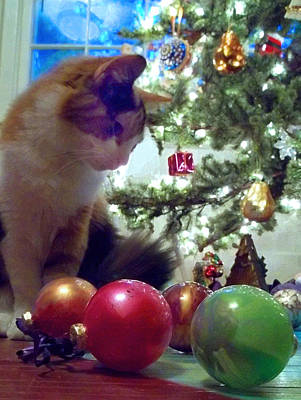 Painting - Kitty Helps Decorate The Tree Christmas Card by Anne Cameron Cutri