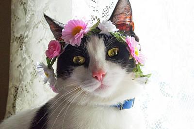 Kitty In A Flower Crown 1 Art Print