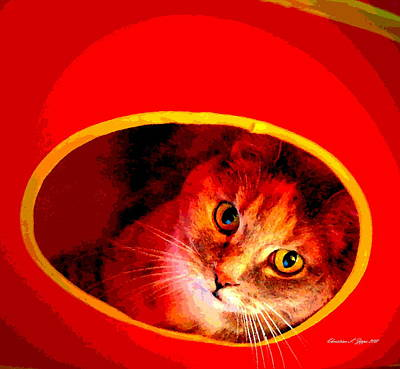 Photograph - Kitty In Orange Cube - Paintograph by Christine S Zipps