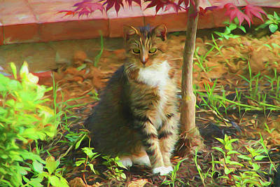 Painting - Kitty In The Garden - Painting by Ericamaxine Price