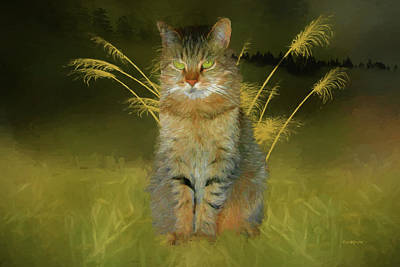 Photograph - Kitty In The Grass - Painting by Ericamaxine Price