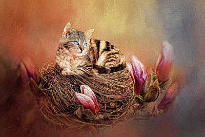Photograph - Kitty In The Nest Painting by Ericamaxine Price