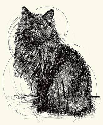 Drawing - Kitty by Michael Volpicelli